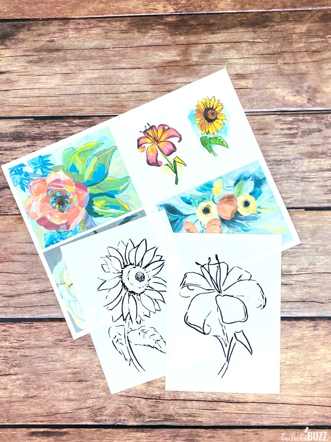 Paint by Shadows Art Kits small canvases with color guides