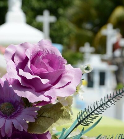 flowers at a graveyard