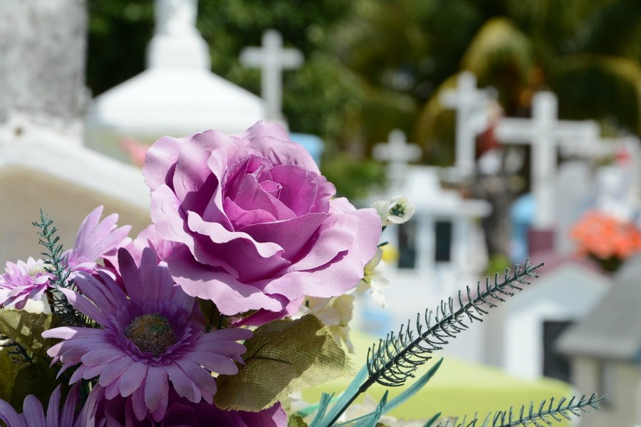 What To Do When A Family Member Dies