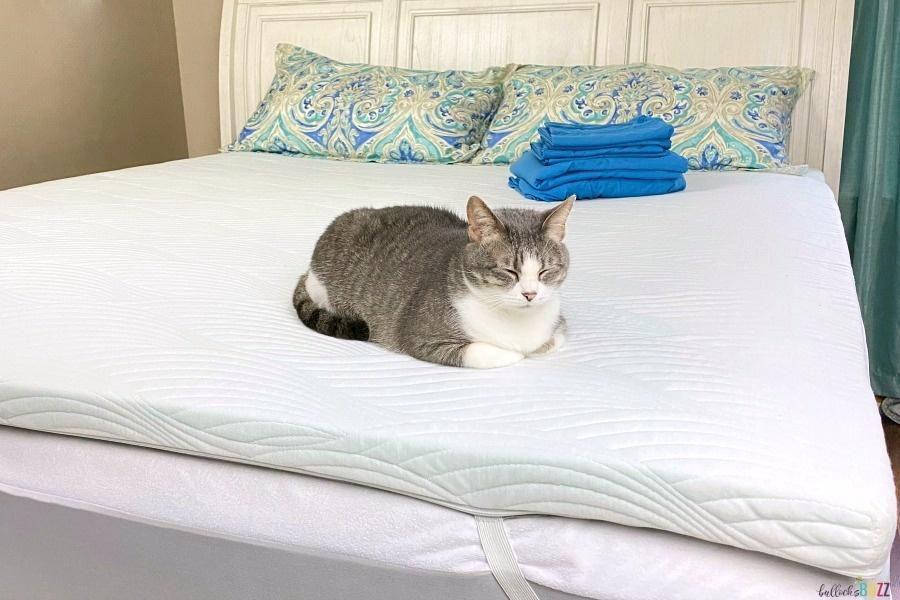cat sleeping on nest bedding Cooling Mattress Topper