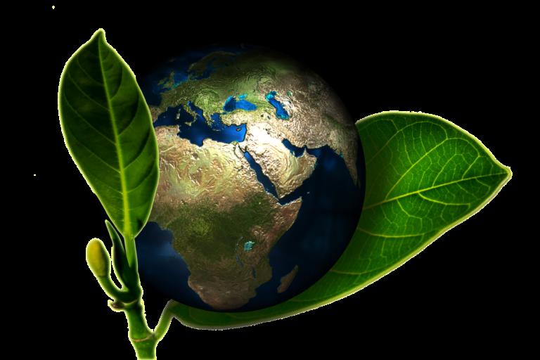 Everyday Sustainable Habits: 5 Ways to Reduce Waste