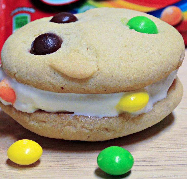 close up of ice cream cookie sandwich