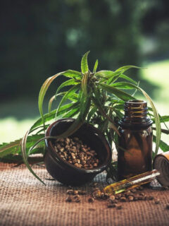 Ways to Incorporate CBD Into Your Diet